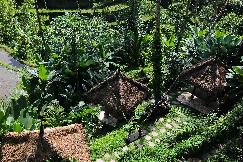 Must See Places Bali: Bali Swing-Ubud