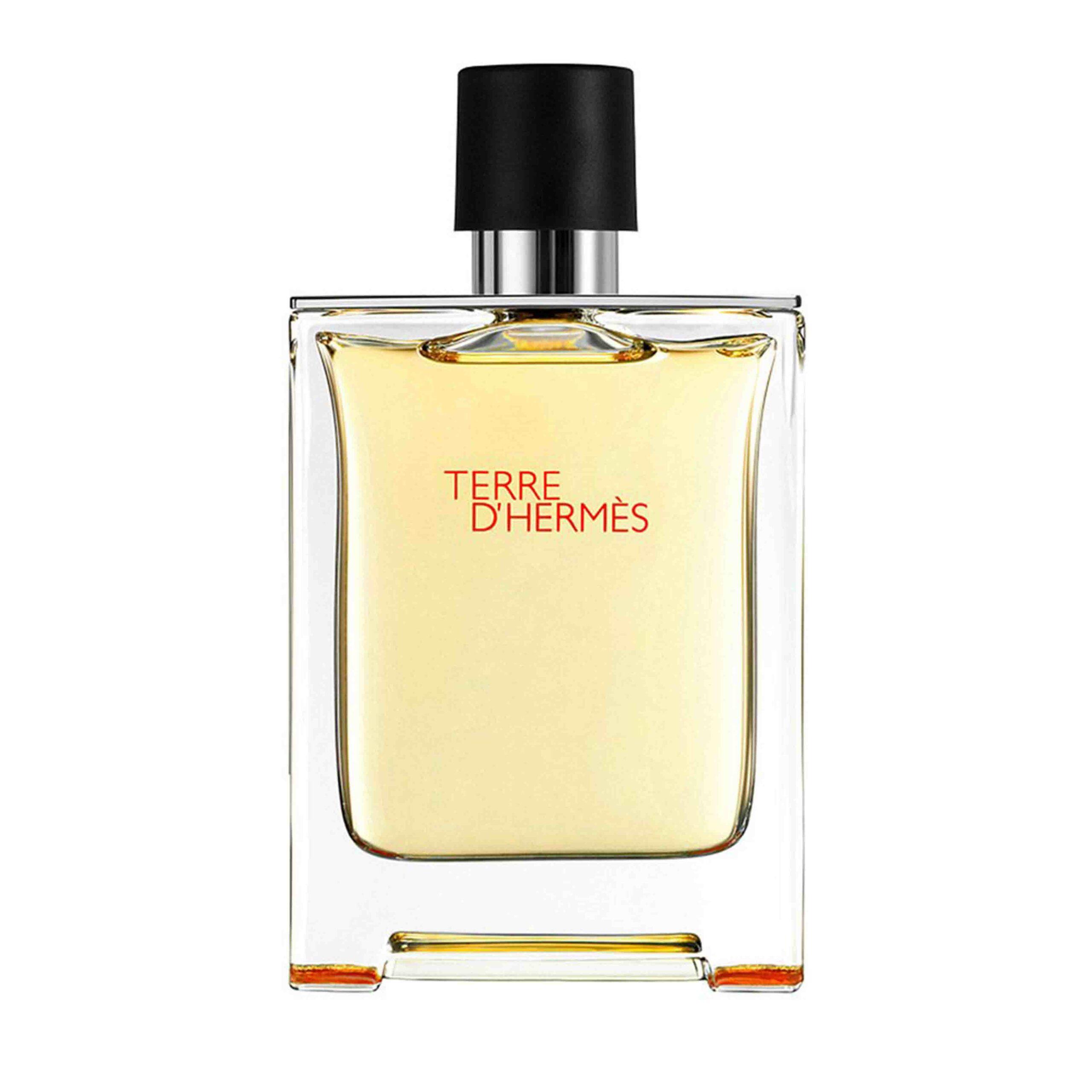 Die besten Parfums für Männer 2021: Terre d'Hermès
